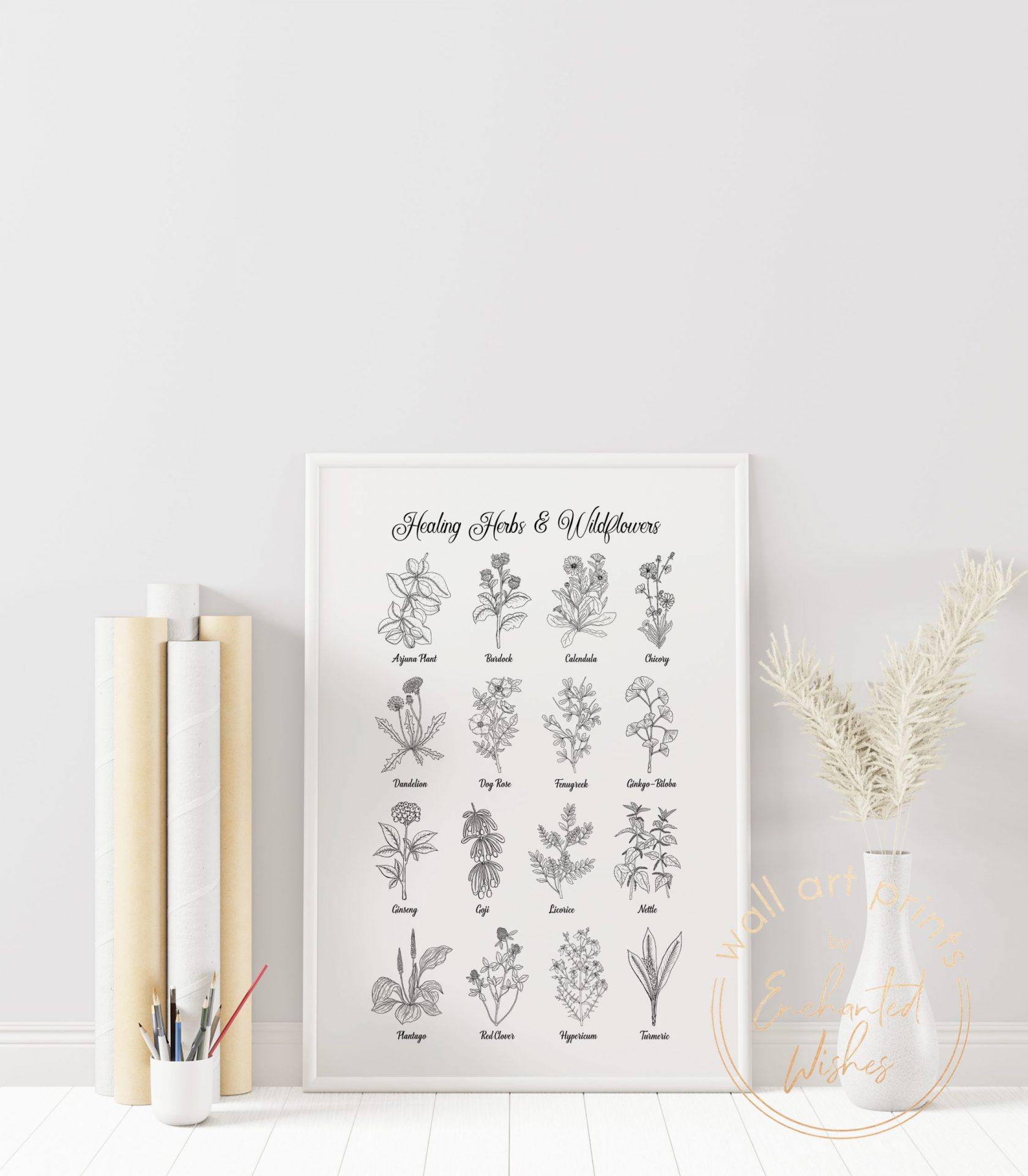 Healing herbs & wildflowers print